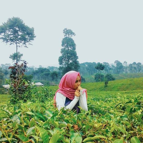 35 Tempat Wisata Di Batang Jawa Tengah Yang Mempesona