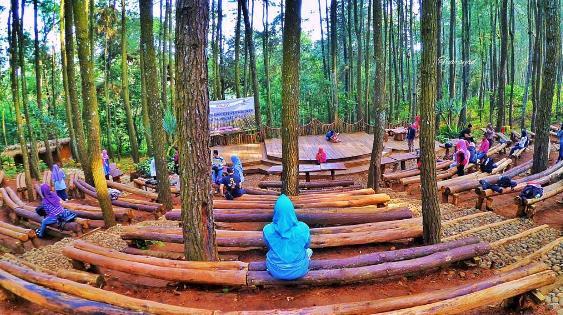 Lokasi Dan Rute Jalan Menuju Hutan Pinus Mangunan