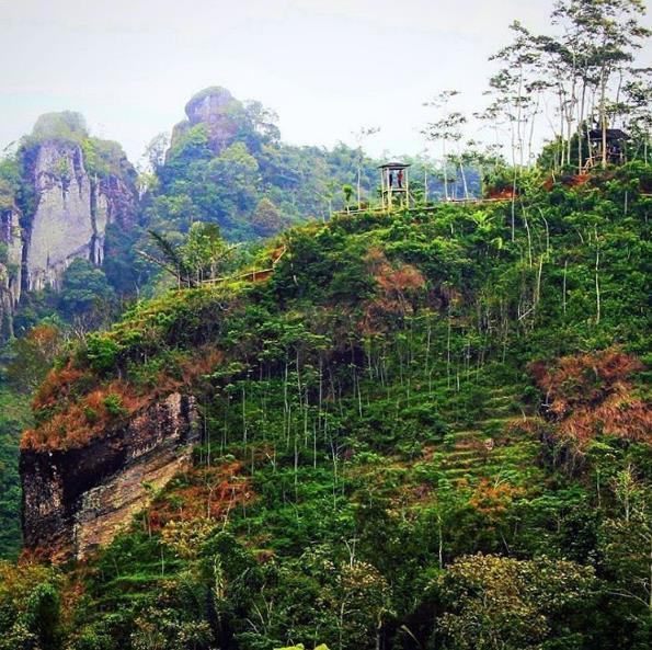 Rute Menuju Lokasi Kebun Teh Nglinggo Kulon Progo