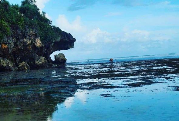 Lokasi Dan Harga Tiket Masuk Pantai Indrayanti Jogja