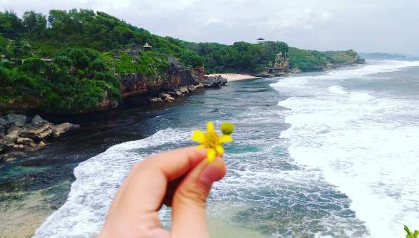Lokasi Dan Tiket Masuk Pantai Kukup Kemadang Gunung Kidul