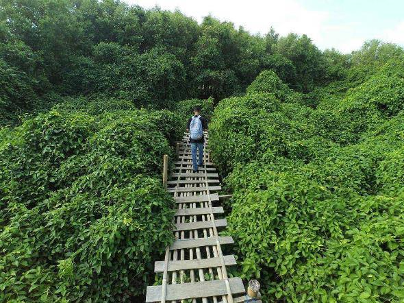 33 Tempat Wisata Alam Di Kulon Progo Yang Membuatmu Terpana
