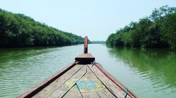 hutan-mangrove-surabaya